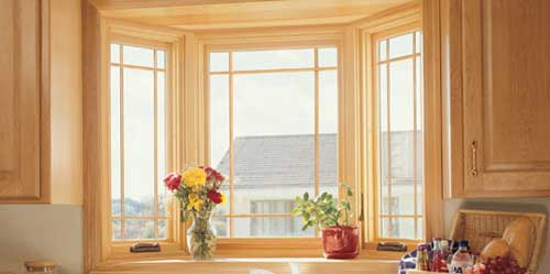 Kalamazoo bay and bow replacement windows