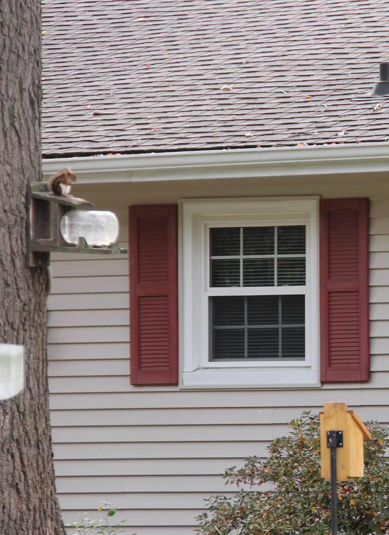 Longjohn home single window